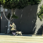 A perspective on homeless